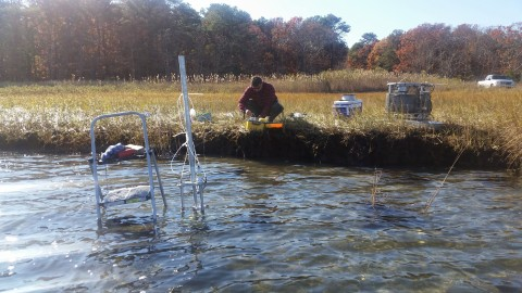 Cornell Cooperative Extension Marine Program Researchers deploy monitoring equipment in efforts to collect  samples of groundwater seepage for analysis.